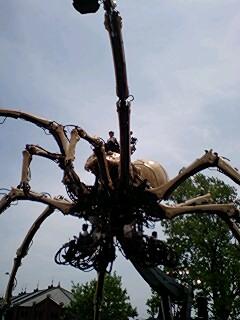 蜘蛛襲来  その2